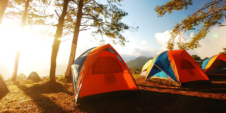 Three camping tents lined up outdoors with trees surroundingused to represent recreational Insurance Columbia SC