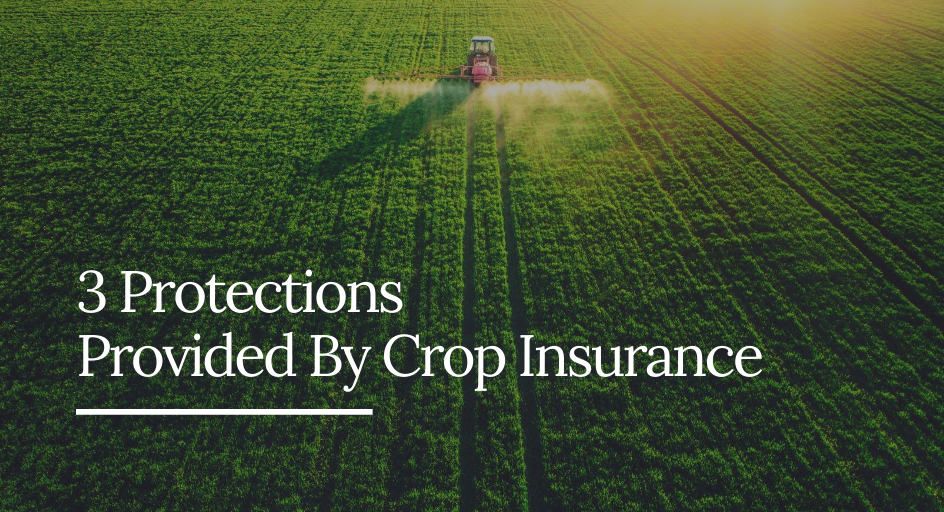 blog image of an american farm protected by crop insurance